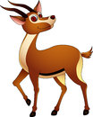 Cute gazelle cartoon Stock Image
