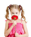 Cute girl with flower, isolated on white Stock Photos