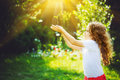 Cute girl holding young green plant in sunlight. Royalty Free Stock Photo