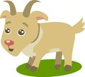 Cute goat cartoon vector isolated Stock Image