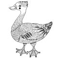 Cute goose hand drawn doodle bird collection zentangle Royalty Free Stock Photo