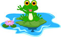 Cute green frog cartoon Royalty Free Stock Photo