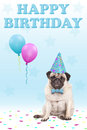 Cute grumpy faced pug puppy dog with party hat, balloons, confetti and text happy birthday, on blue background Royalty Free Stock Photo