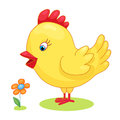 Cute hand drawn chick cock chicken yellow kids cartoon vector illustration on white background. Baby shower isolated Royalty Free Stock Photo