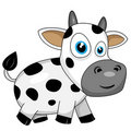 Cute happy cow Stock Photography