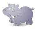 Cute Hippo Stock Photography