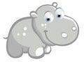 Cute hippo cartoon Royalty Free Stock Image