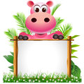 Cute hippopotamus with board Stock Image