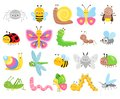 Cute insects. Big set of cartoon insects for kids and children. Butterflies, snail, spider, moth and many other Royalty Free Stock Photo
