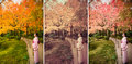 Cute japanese girl is standing calmly in autumn wilderness lands landscape stylish fashion color set Stock Photos