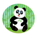 Cute kid panda eating bamboo Stock Photo