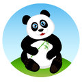 Cute kid panda eating bamboo Stock Images