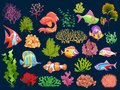 Cute kid underwater set. Aquarium baby fish and seaweed in water for children isolated vector collection