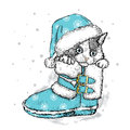 Cute kitten in winter boots. Christmas and New Year.
