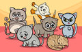 Cute kittens group cartoon illustration of funny or cats Stock Images