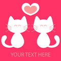Cute kittens in love Royalty Free Stock Image