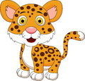 Cute leopard cartoon illustration of Stock Photography