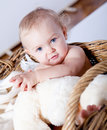 Cute little baby infant in basket with teddy Stock Photo