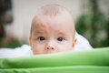 Cute little baby in stroller green looking out Stock Photos
