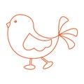 Cute little bird walking