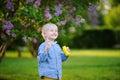 Cute little boy blowing soap bubbles in beautiful summer park Royalty Free Stock Photo
