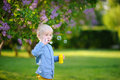 Cute little boy blowing soap bubbles in park Royalty Free Stock Photo