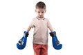 Cute little boy with boxing gloves Royalty Free Stock Photo