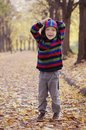 Cute little boy enjoying autumnal nature. Portrait of boy in Autumn Woods. Royalty Free Stock Photo