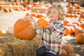Cute little boy sitting and holding his pumpkin at pumpkin patch adorable in a rustic ranch setting the Royalty Free Stock Image