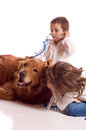Cute little brother and sister playing veterinary with their dog Stock Photos