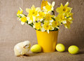 Cute little chick and easter eggs with bouquet of yellow daffodils Stock Photography