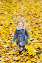 Cute little girl in autumn foliage in a park full length portr Stock Photos