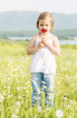 cute little girl in the chamomile field Royalty Free Stock Photo