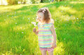 Cute little girl child blowing dandelion flower Royalty Free Stock Photo