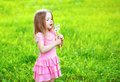 Cute little girl child in dress blowing dandelion flower Royalty Free Stock Photo