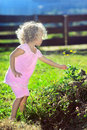 Cute little girl with curly hair picking flowers Royalty Free Stock Photos