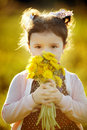 Cute little girl with dandelions Stock Images