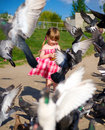 Cute little girl dress feeding pigeons Royalty Free Stock Photo