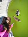 Cute little girl feeding ducks at park Royalty Free Stock Photo