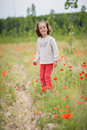 Cute little girl having fun in a poppy field Royalty Free Stock Photo