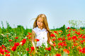 Cute little girl playing in red poppies field summer day, beauty Royalty Free Stock Photo