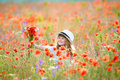 Cute little girl in the poppy field with flowers Royalty Free Stock Photo