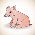 Cute little pig illustration of Royalty Free Stock Photos