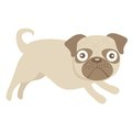 Cute little pug dog illustration Royalty Free Stock Photography