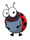 Cute little red ladybug cartoon character or ladybird standing upright smiling at the viewer with a happy face vector illustration Royalty Free Stock Photos