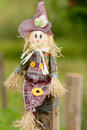 Cute little scarycrow doll on garden field. Royalty Free Stock Photo