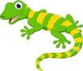 Cute lizard cartoon Royalty Free Stock Photo