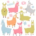 Cute llama set. Baby llamas alpaca, wild lama. Peru camel girl invitation elements cartoon vector set