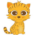 Cute looking brown stripe cat with big eyes Stock Photography