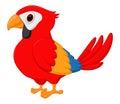 Cute macaw bird cartoon illustration of on tree isolated on white Royalty Free Stock Photos